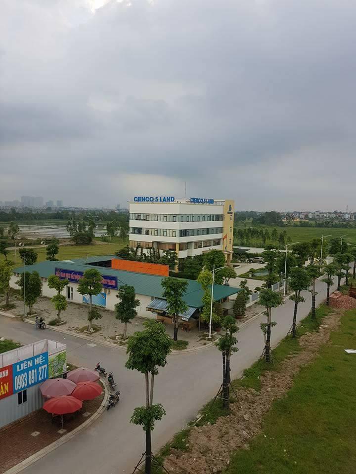Trụ sở quản lý Cienco 5 Land và sàn giao dịch bất động sản Mường Thanh